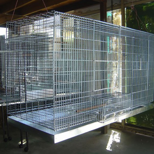 Hanging Parrot Breeding Cage With Metal Tray Pet Creations