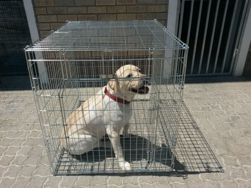 Xlarge Fold Up Crate Dogs Puppies Cats Pets Pet Creations