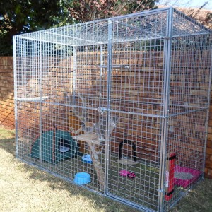 Used Dog Crates For Sale Pets