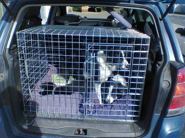 Car Travel Dog Cage