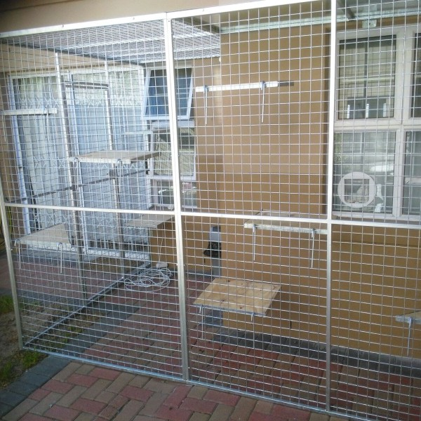 Cat Cage (Custom built-Bolt onto House) & Cat Cage (Custom built-Bolt onto House) | Pet Creations